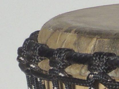male  detail